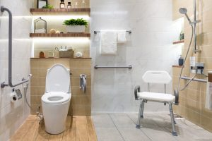 bathroom equipment for disabled person